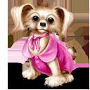 иконка dog, собака, животное, животные, animal,