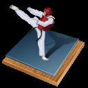 иконка taekwondo, тхэквондо,