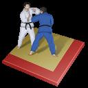 иконки judo, дзюдо,