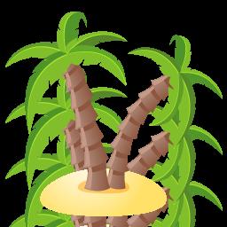 иконки palm, tree, пальма, дерево,