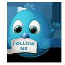 иконки  twitter, follow me, твиттер, птичка, птица,