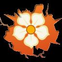 иконки magnolia, магнолия,