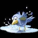 иконки  bird, птичка, птица,