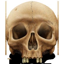 иконки icon, Skull,