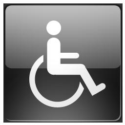 иконки  для инвалидов, инвалид,