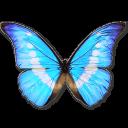 иконки Morpho Helena Personal, бабочка, butterfly,