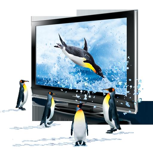 иконка 3D penguins, 3д, пингвины, животные, плазма, телевизор,