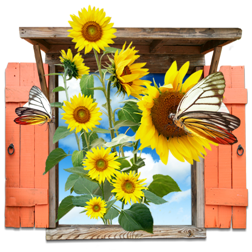 иконки flowers, sunflowers, цветы, подсолнухи,