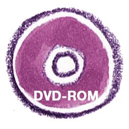 иконки DVDROM, диск,
