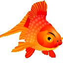 иконки  fish, рыба, рыбка, золотая рыбка,