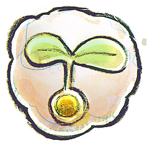 иконка Flower, Seed, цветок,