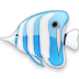 иконки bluefish, рыба, fish, рыбка,