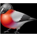 иконки bullfinch, птица, птичка, bird,