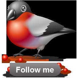 иконка bullfinch, следуй за мной, птичка, птица, bird,