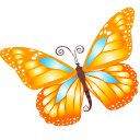 иконки бабочка, butterfly,