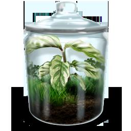иконки террариум, растение, природа, цветок, terrarium,