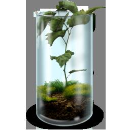 иконка террариум, природа, растение, жизнь, errarium,