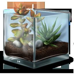 иконки террариум, растение, жизнь, природа, tterrarium,