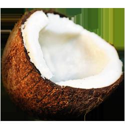 иконки кокос, coconut,