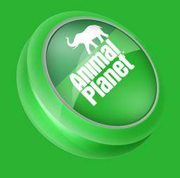иконки animal planet,