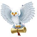 иконки owl, сова, гарри поттер,