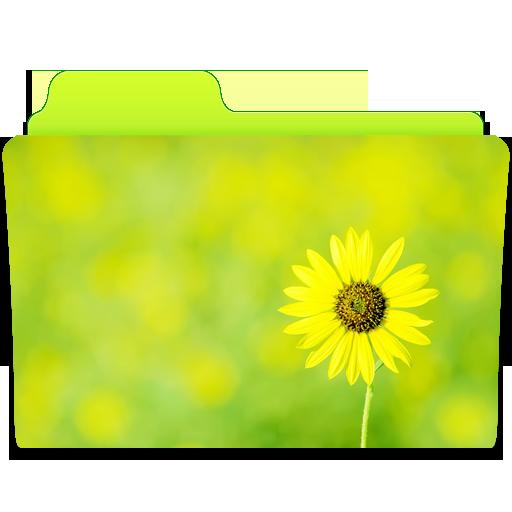 иконки flower, цветок, цветы, папка,