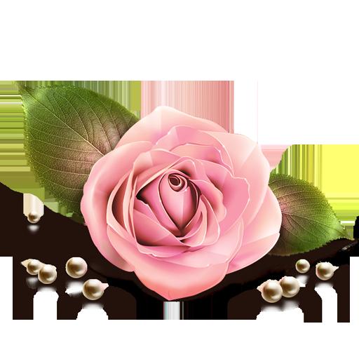 иконка роза, rose, цветок, цветы,