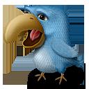 иконки птица, животное, angor,