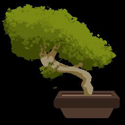 иконки бонсай, дерево,