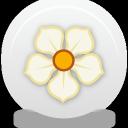 иконка magnolia,