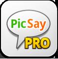 иконка picsaypro,