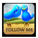 иконки twitter, твиттер, птица, птицы, follow me,