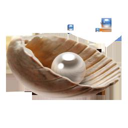 иконка жемчуг, ракушка, pearl,