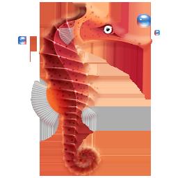 иконки морской конек, море, seahorse,