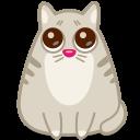 иконка кот, кошка, животное, глаза, cat, eyes,