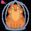 иконки кот, кошка, животное, клетка, cat, cage,