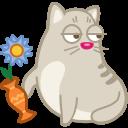 иконки кот, кошка, животное, ваза, хулиган, cat, rascal,