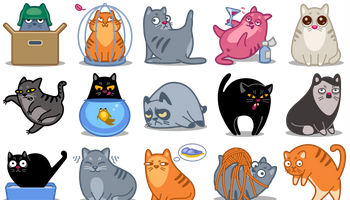 Meow Icons by Iconka.com