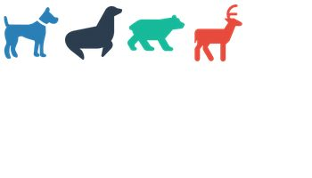Animals by Daisy Binks